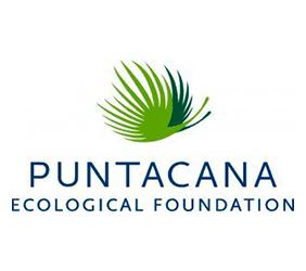 puntacana logo